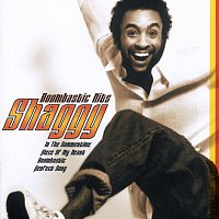 Shaggy – Boombastic Hits