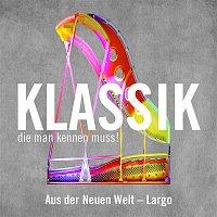 """Adrian Leaper – Largo aus der """"Neuen Welt"""" / 9. Sinfonie (Largo from The New World)"""