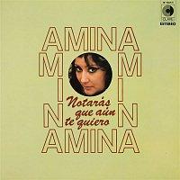 Amina – Notarás que aún te quiero
