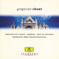 Benedictine Abbey Choir of Munsterschwarzach, Pater Godehard Joppich – Gregorian Chant [2 CDs]