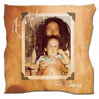 "Damian ""Jr. Gong"" Marley – Mr. Marley"