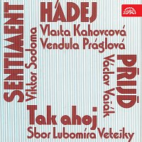 Orchestr Čs. televize/Václav Zahradník – Děčínská kotva 1981