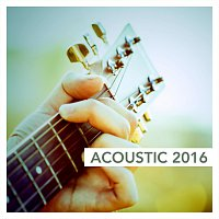 Různí interpreti – Acoustic 2016