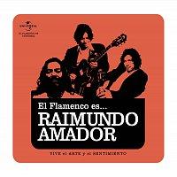 Raimundo Amador – Flamenco es... Raimundo Amador