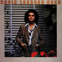 David Sanborn – Promise Me the Moon