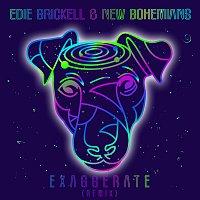 Edie Brickell & New Bohemians – Exaggerate [Remix]