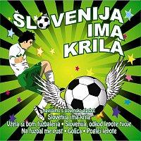 Různí interpreti – Slovenija ima krila