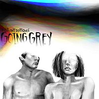 The Front Bottoms – Going Grey
