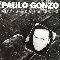 Paulo Gonzo – Pedras Da Calcada