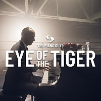 The Piano Guys – Eye of the Tiger