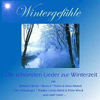 Various  Artists – Wintergefuhle