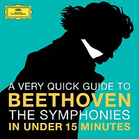 Různí interpreti – Beethoven: The Symphonies in under 15 minutes