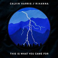 Calvin Harris, Rihanna – This Is What You Came For