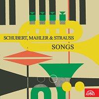 Elisabeth Rutgersová, Alfréd Holeček – Písně (Schubert, Mahler, Strauss)