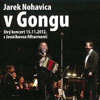 Jaromír Nohavica – V Gongu