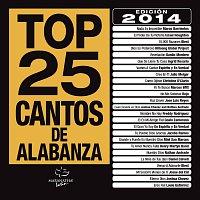 Různí interpreti – Top 25 Cantos De Alabanza [Edición 2014]