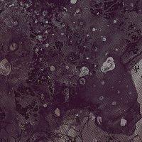 Pinkish Black – Razed To The Ground