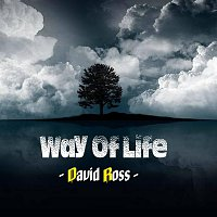 David Ross – Way Of Life