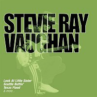 Stevie Ray Vaughan – Collections