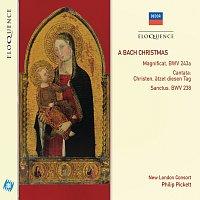 Philip Pickett – A Bach Christmas