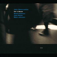 John Abercrombie, Mark Feldman, Joey Baron, Marc Johnson – Cat 'N' Mouse
