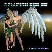 Void Orchestra – Naturealization