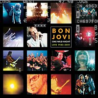 Bon Jovi – One Wild Night 2001