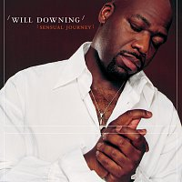 Will Downing – Sensual Journey