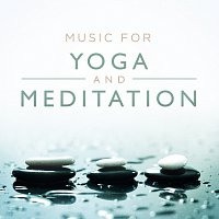 Různí interpreti – Music For Yoga And Meditation