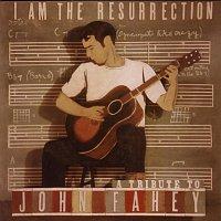 Různí interpreti – I Am The Resurrection:  A Tribute To John Fahey