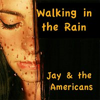 Jay, The Americans – Walkin'in the Rain