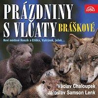 Přední strana obalu CD Písničky a příběhy zvířátek z večerníčků Bráškové. Prázdniny s vlčaty
