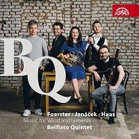 Přední strana obalu CD Janáček, Foerster & Haas: Hudba pro dechové nástroje