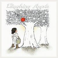 Yusuf / Cat Stevens – The Laughing Apple – CD