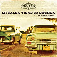 Různí interpreti – Mi Salsa Tiene Sandunga [Fiesta Edition]