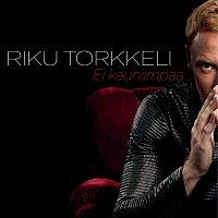Riku Torkkeli – Ei kauniimpaa