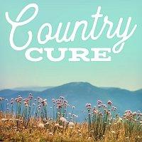 Různí interpreti – Country Cure