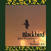 Jaco Pastorius, Rashid Ali – Blackbird (HD Remastered)