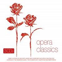 Přední strana obalu CD Various Artists/Opera Classics