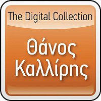 Thanos Kalliris – The Digital Collection