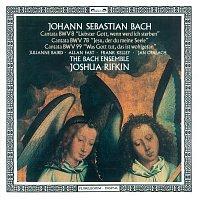Joshua Rifkin, Julianne Baird, Allan Fast, Frank Kelly, Jan Opalach – Bach, J.S.: Cantatas Nos. 8, 78 & 99