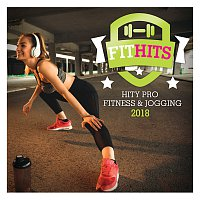 Různí interpreti – Fit Hits 2018