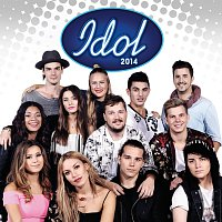 Různí interpreti – Idol 2014