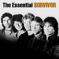 Survivor – The Essential Survivor