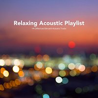 Různí interpreti – Relaxing Acoustic Playlist: 14 Chilled and Smooth Acoustic Tracks
