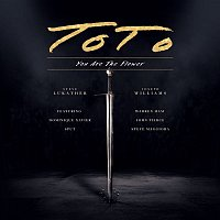 Toto – You Are The Flower (Live)