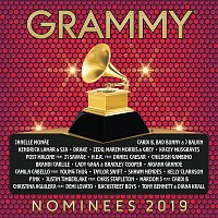 Různí interpreti – 2019 GRAMMY® Nominees