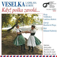Veselka Ladislava Kubeše, Bambini di Praga – Když polka zavolá...