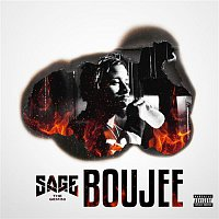 Sage The Gemini – Boujee