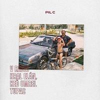 Pil C – V rádiu hral Elán, keď umrel Tupac CD